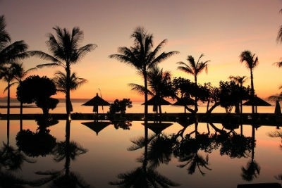 Palmeras en Bali Indonesia