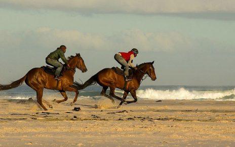 Carreras de caballos en la playa de Sanlúcar de la Barrameda